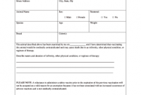 Certificate Of Vaccination Template 2