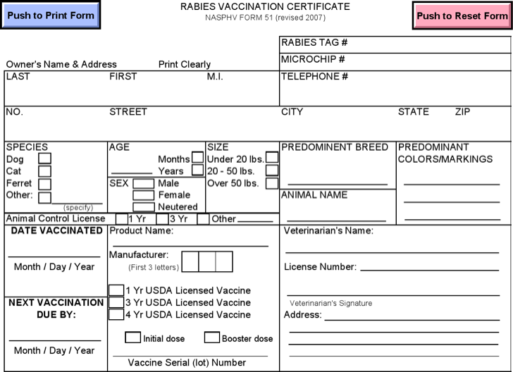 Dog Vaccination Certificate Template