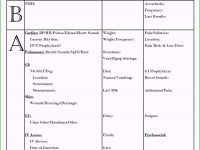 24 Hour Nursing Shift Report Template Best Gallery Sbar Nurse Report with Nursing Report Sheet Template