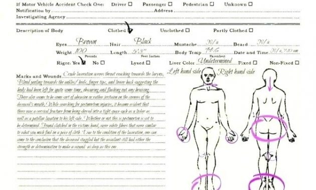 Pin On Forms For Creative Writing Riffs in Blank Autopsy Report Template