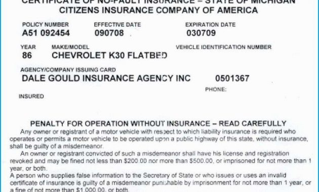 40 Proof Of Auto Insurance Template Free | Moestemplate in Proof Of Insurance Card Template