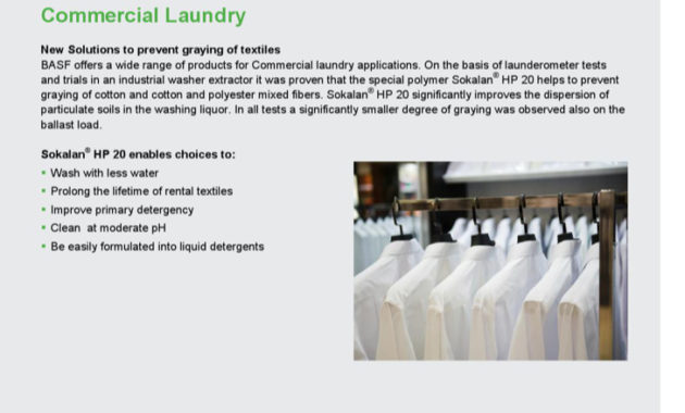 2+ Laundry Business Proposal Template Free Download pertaining to Free Laundromat Business Plan Template